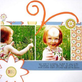 Photos_Big Patterns02
