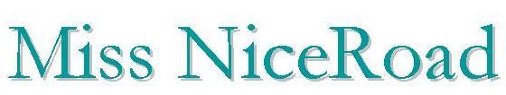 Signature blog_Miss NiceRoad