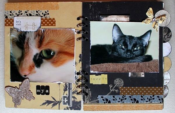 Nienna_Engraver_l'heure des chats_2