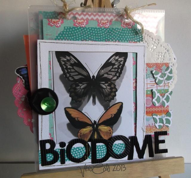 VéroColi_Sunny Days_Album Biodôme