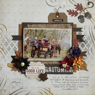 Kit reflection Falls - stacy - good life