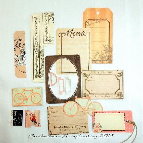 Claralesfleurs-MiniAlbum.SomethingBluePrima.C