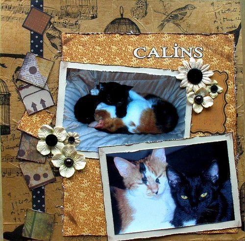 Câlins_Héritage